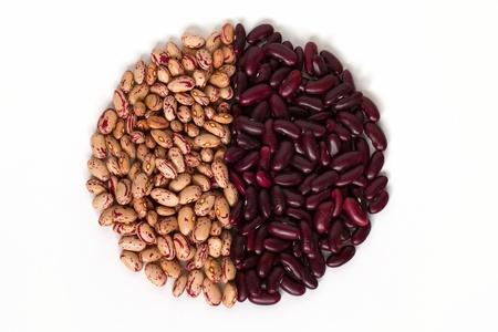 common bean: Circular shape of common beans Stock Photo