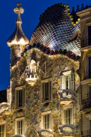 casa: Casa Battlo in Barcelona  in Spain