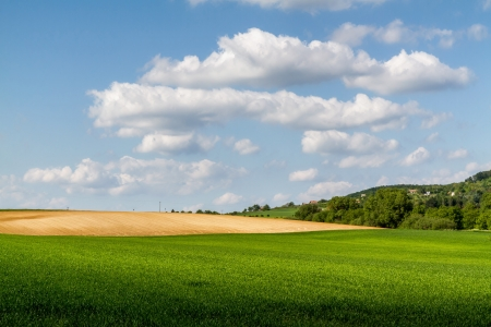 arable land: Beautiful arable land in a sunny,windy day Stock Photo