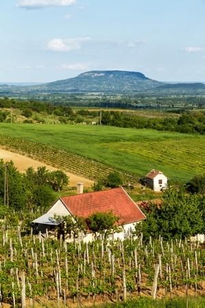上からのハンガリーからの風景