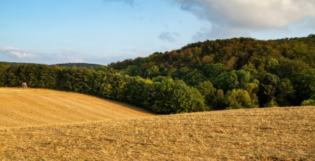 arable land: Beautiful arable land in a sunny day