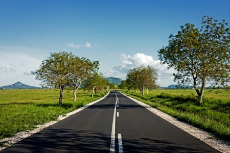 Asphalt road through the green field photo