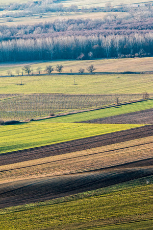 arable land: Beautiful arable land in the autumntime Stock Photo