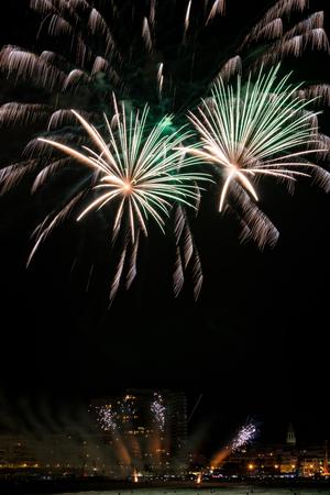 light up: Fireworks light up the sky Archivio Fotografico