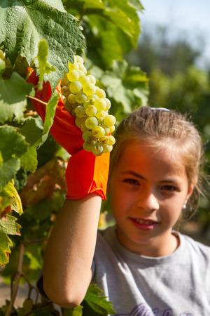 Pretty girl portrait with grapes photo