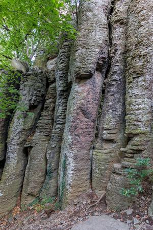 basalt: Columnar basalt at Hungary,Badacsony