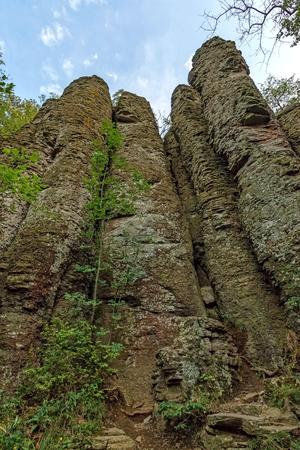 columnar: Columnar basalt at Hungary,Badacsony