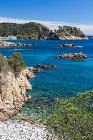 Detail of the Spanish coast at summer (Catalonia,Costa Brava)