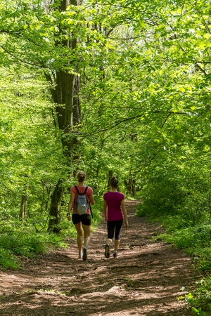 Two oung girl walking in the forest photo