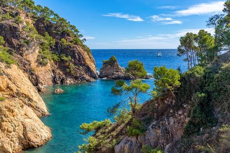 Nice detail from Costa Brava coastal in Spain, La Fosca Standard-Bild