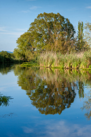 Nice water reflection in Hungary near river Zala Standard-Bild