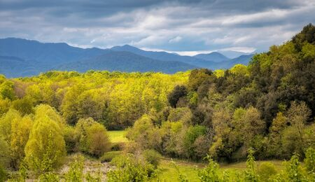 Panoramic picture from valley of Garrotxa Volcanic Zone Natural Park