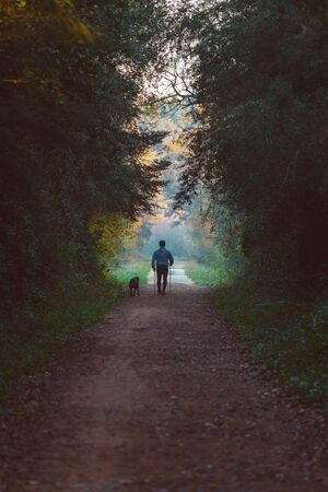 Man and dog walking in a natural tunnel in autumn time 写真素材