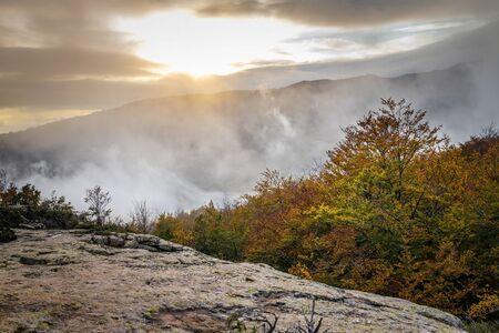 Autumn picture from Spanish mountain Montseny, near Santa fe del Montseny, Catalonia Фото со стока