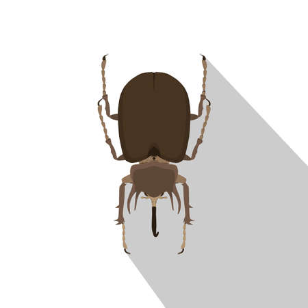 Beetle rhinoceros vector bug rhino illustration silhouette nature insect isolated Иллюстрация
