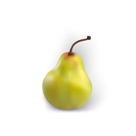Pear isolated realistic white background green fruit yellow good fresh vector organic Illustration