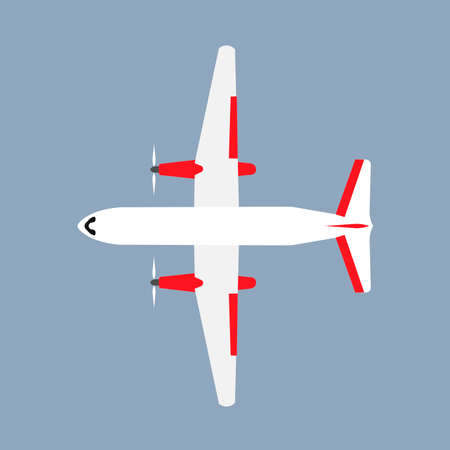 Plane travel transportation vector airliner top view. Flat business aviation transport isolated