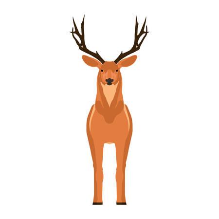 Deer front view vector symbol. Head mammal flat reindeer concept