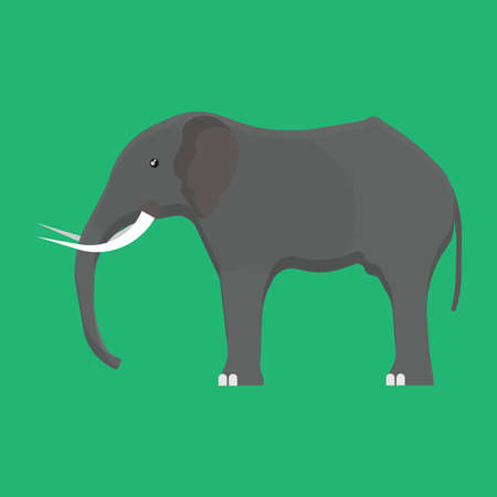 Elephant side view vector icon gray animal illustration. Isolated mammal africa zoo. Safari wildlife drawing nature