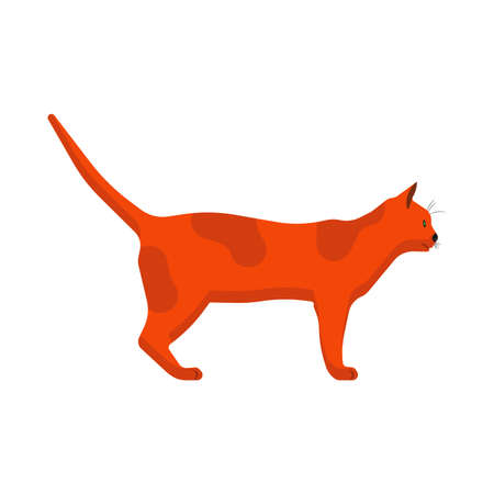 Cat side view vector icon animal cartoon illustration. Redhead pet isolated tail kitty. Graphic walking flat mammal