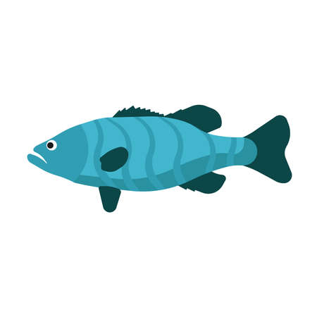 Fish side view vector icon sea animal illustration. Underwater cartoon ocean life. Blue wildlife flat exotic symbol