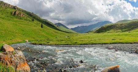 tien shan: Mountain meadow in the East Tien Shan, Kazakhstan