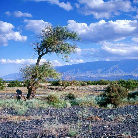waterless: Rocky semidesert in Kazakhstan Stock Photo