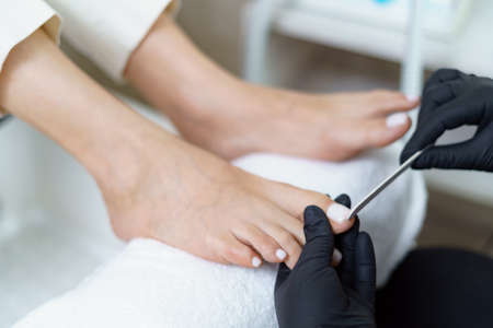 Specialist in beauty salon making french pedicure for female client. Relaxing at beauty salon, caring about nails.