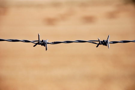 barbed wire against field  photo