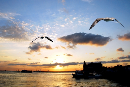 sunset sky with gulls and Haydarpasa Railway Station building,  304;stanbul, Turkey