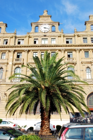Haydarpasa Railway Station Building and palm tree in Istanbul, Turkey