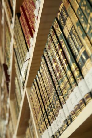 bibliomania: Books on library shelves