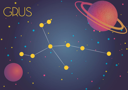 Bright image of the constellation Grus. Kids who are fond of astronomy will like it very much.