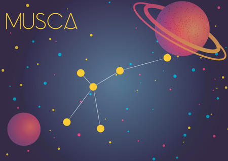 Bright image of the constellation Musca. Kids who are fond of astronomy will like it very much.