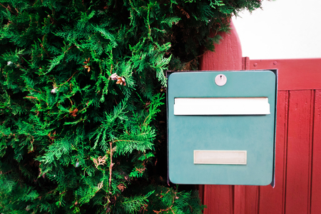 Green vintage mailbox on a red wooden fence with fluffy thuya 版權商用圖片