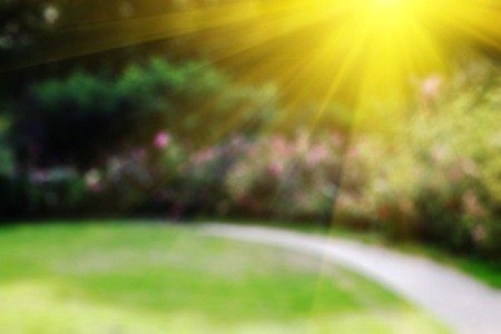 Abstract blurry background with summer garden and sun flares.