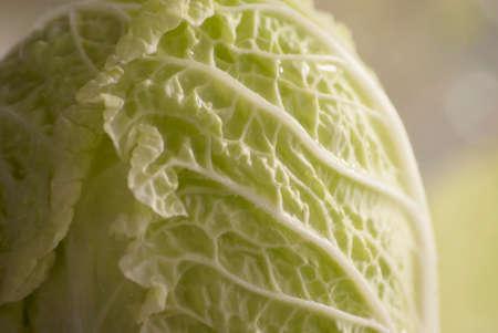 Fresh juicy green leaf cabbage salad close-up.