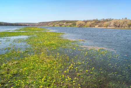 Meadows and pastures in hilly valley flooded with a spring river stream. Flower island islet in the middle of the water. Imagens