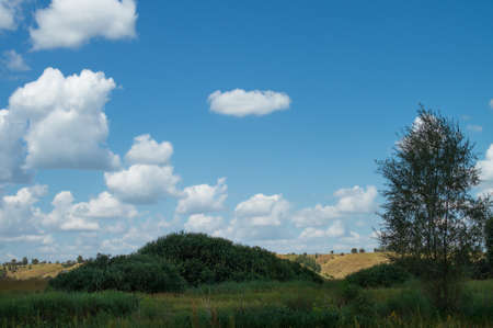 Cloudy summer sky over the meadow hilly valley of the reserved places of Russia. Landscape field and grass.
