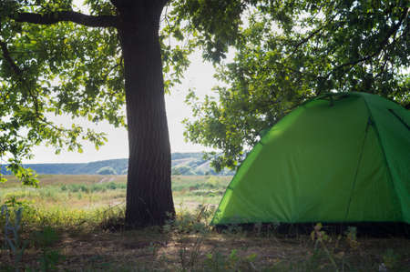 Tourist tent under a krone tree in a summer hilly valley. Outdoor recreation