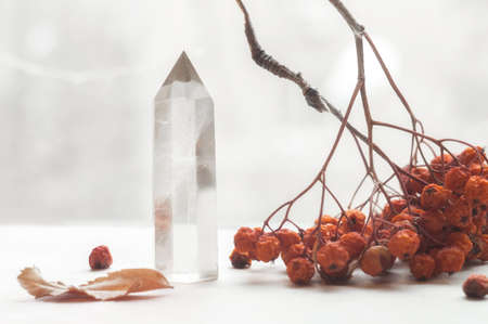 Snow white large crystal of pure transparent quartz. Chalcedony gem on background of bunch rowan berries, mountain ash