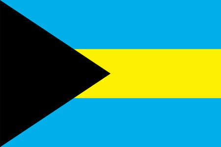 Bahamas Flag Vector Icon Illustration