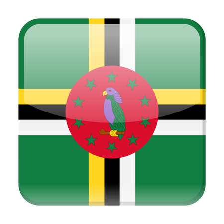 Dominica flag vector square icon - illustration on white background.