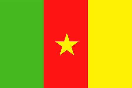 Cameroon Flag Vector Icon Illustration