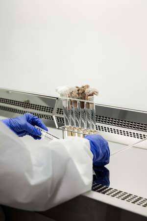 Laboratory research concept. Medical test tubes with a brown chemical solution. scientist conducting scientific research