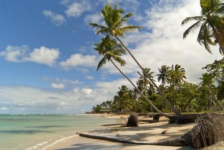 republic of dominican: Wild caribbean beach. Samana. Dominican republic Stock Photo