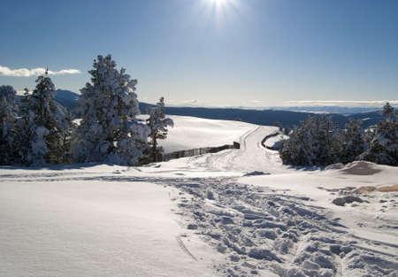 Nice winter day in Sarikamis, turkish ski resort. photo