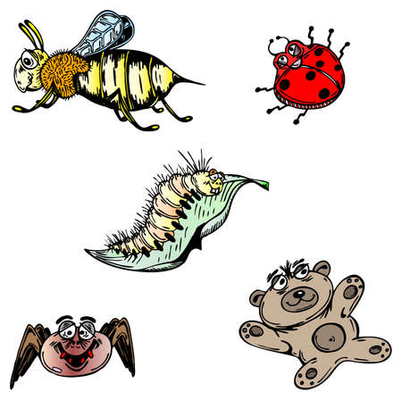 grub: Bee, spider, lady beatle, worm and teddy bear as colored as vector illustration