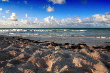 Beach at Punta Cana, Dominican Republic photo