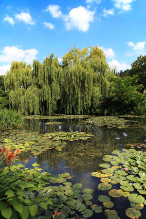 Pond and garden at Giverny, France photo